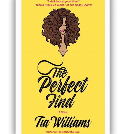 The Perfect Find By Tia Williams Lands At Netflix