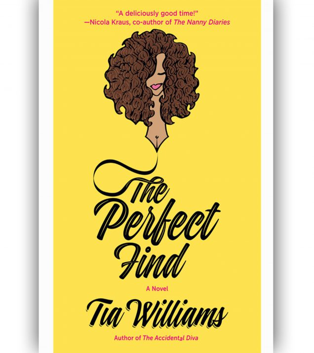 The Perfect Find by Tia Williams Book Cover