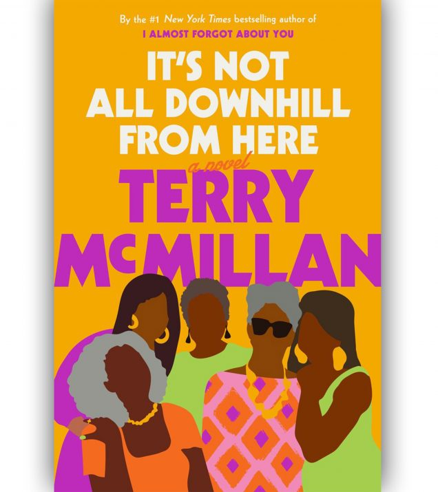 Its-Not-All-Downhill-From-Here-by-Terry-McMillan-Book-Cover